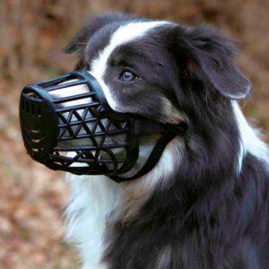 AÇAIME AJUST PLASTICO - Açaimes - Produtos para cão