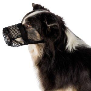 AÇAIME ANTI INGESTÃO - Açaimes - Produtos para cão
