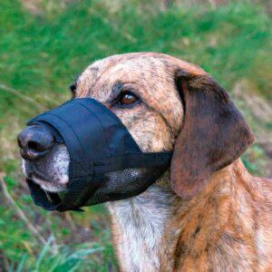 AÇAIME C/ REDE NYLON - Açaimes - Produtos para cão