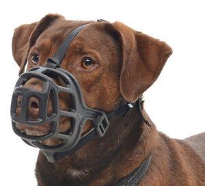 AÇAIME KRUUSE - Açaimes - Produtos para cão