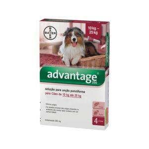 ADVANTAGE CAO 10 - 25 KG CX4 - Antiparasitários - Tratamentos para cão