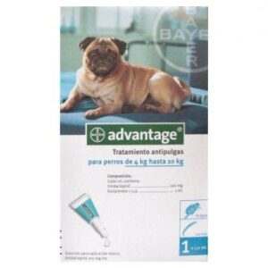 ADVANTAGE CAO 4 - 10 KG CX4 - Antiparasitários - Tratamentos para cão