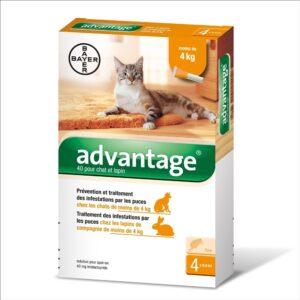 ADVANTAGE GATO ATE 4 KG CX4 - Antiparasitários - Tratamentos para gato