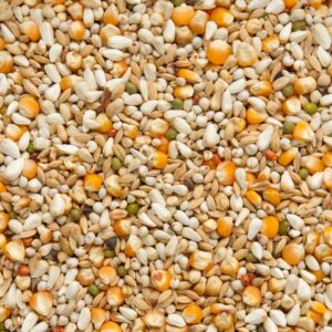 BEYERS GABY VANDENABEELE 20 KG - Alimentação base para pombos - Produtos para pombos