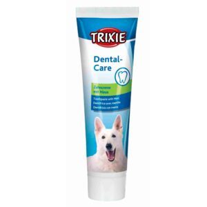 PASTA DENTIFRICA C/SABOR MENTA 100 GR - Produtos para cão - Tratamentos para cão