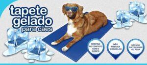 TAPETE REFRESCANTE - Acessórios para cão - Produtos para cão